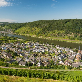 Blick auf das Winzerdorf Alken
