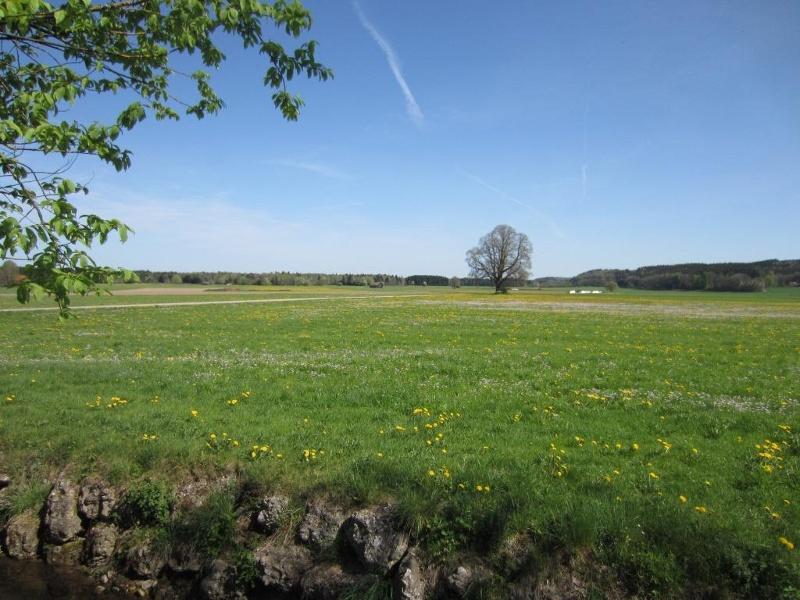 Schloßholzweg & Waldseeweg