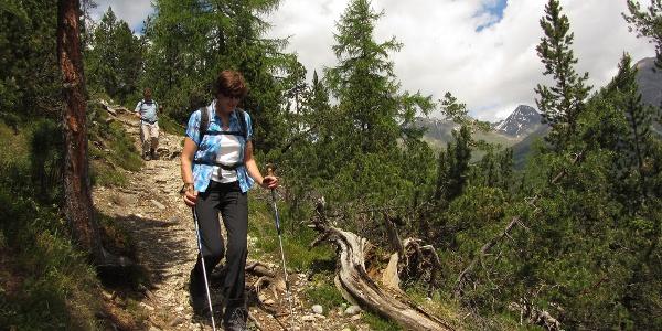 Unterwegs im Nationalpark zwischen Zernez und Val Cluozza