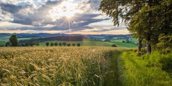Wandern rund um Wormbach