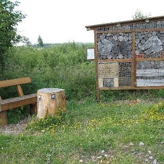 Insektenhotel an der Sauerland-Waldroute