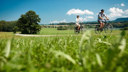 Über Felder und Wiesen...