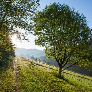Tolle Wanderungen durch das Schmallenberger Sauerland