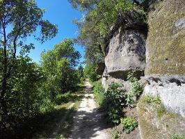 Foto Auf dem Weg zwischen Dorfbachklamm und Altendorf