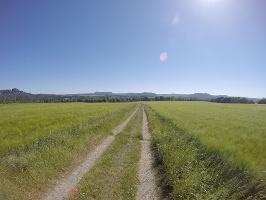 Foto Panoramaweg oberhalb von Bad Schandau