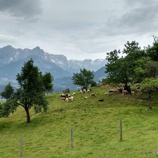 Bauernhof Oberberg