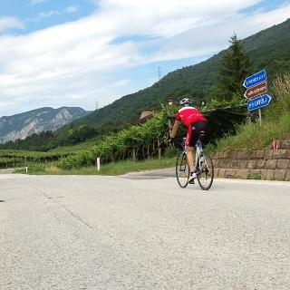 Colline avisiane. Si pedala in direzione San Michele all'Adige