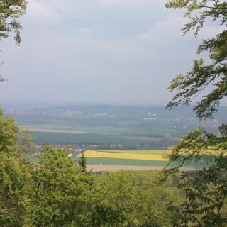 Ausblick vom Tosmar über Hildesheim