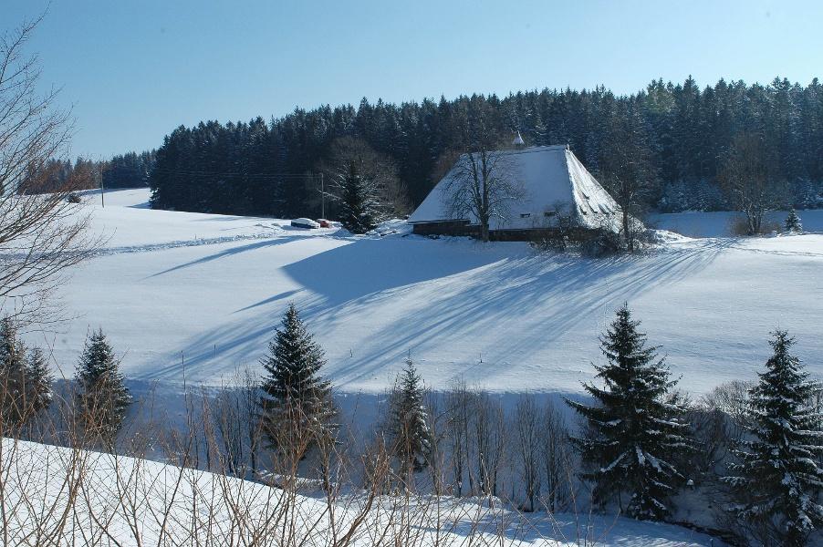 Furtwangen Tour 3 - Rundwanderung um den Bregenbach