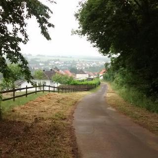 Blick auf Alsweiler v. der Weierwaldstraße aus