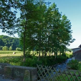 Die Rennertehäuser Mühle.
