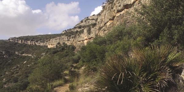 Serra de l'Ermita (Gebirge), in dem man die Felsmalerei findet