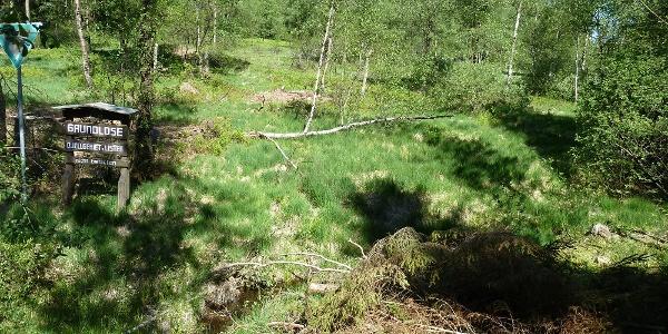 """Naturschutzgebiet """"Grundlose"""" bei Meinerzhagen"""