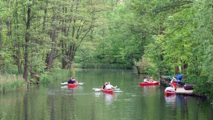 Bootstour ab Groß Wasserburg