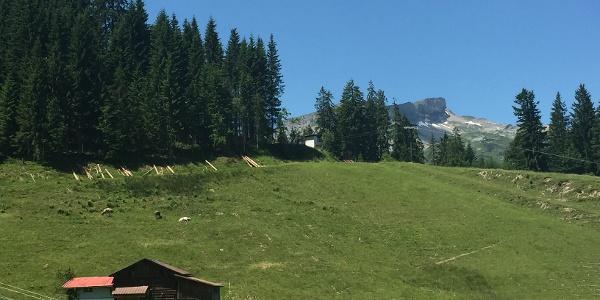 Ifenblick an der Bergstation Heuberglift