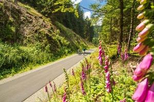 W4 Ziegenhellenradrundweg, Start und Ziel in Winterberg