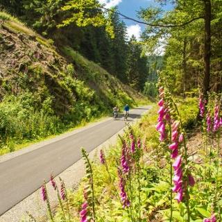 Auf dem Radweg Winterberg nach Züschen