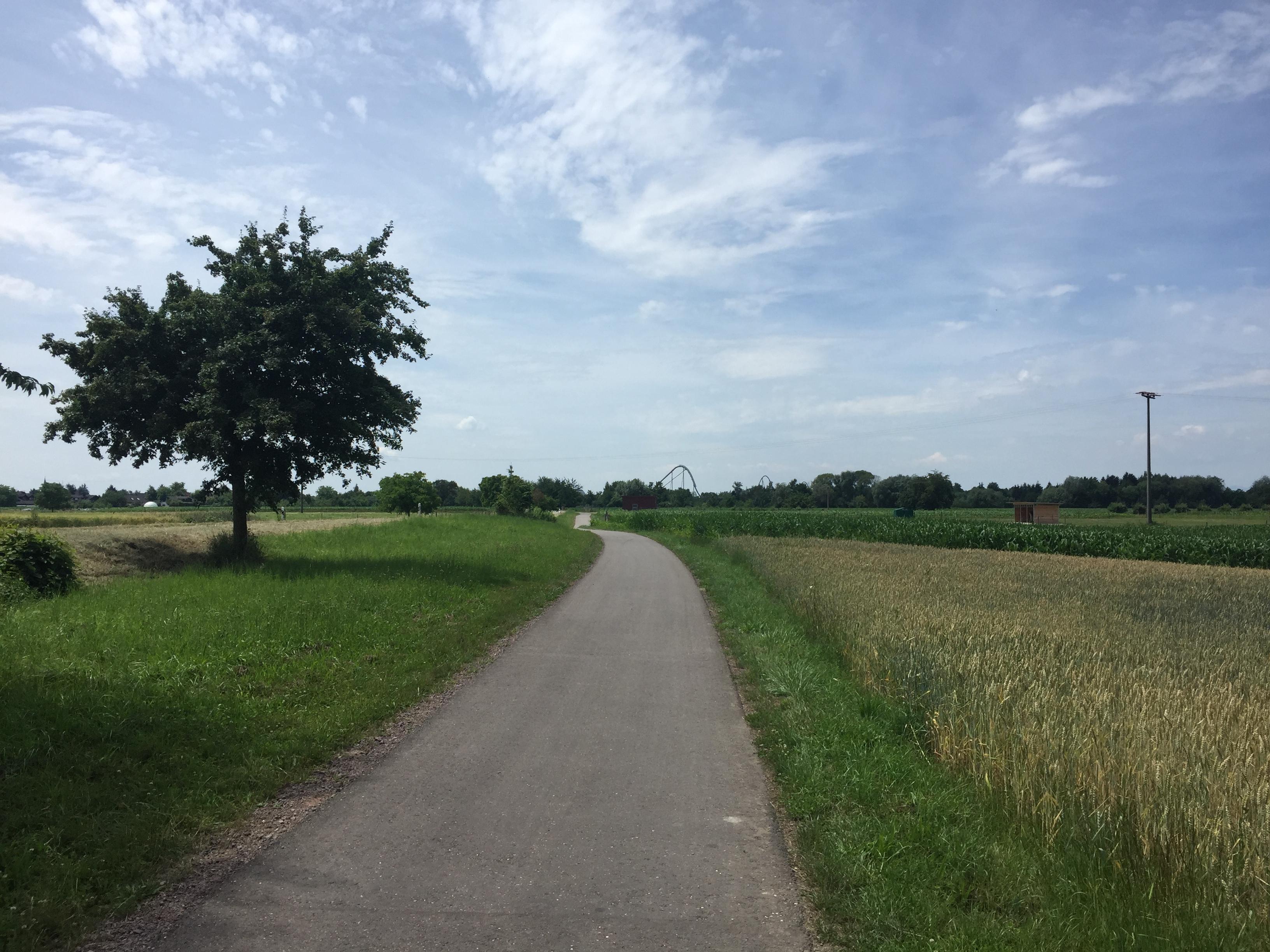 Radweg vor Rust