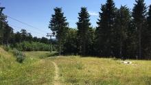 Trailpark Winterberg L2 - Shorty