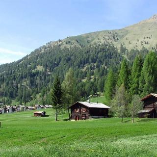 Bellamonte - Hütten