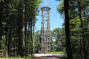 Waldsee-Rundweg zum Urenkopfturm