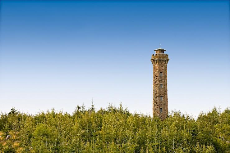 Nordrach - Nordic-Walking-Tour Nr. 7: Moosturm-Kornebene