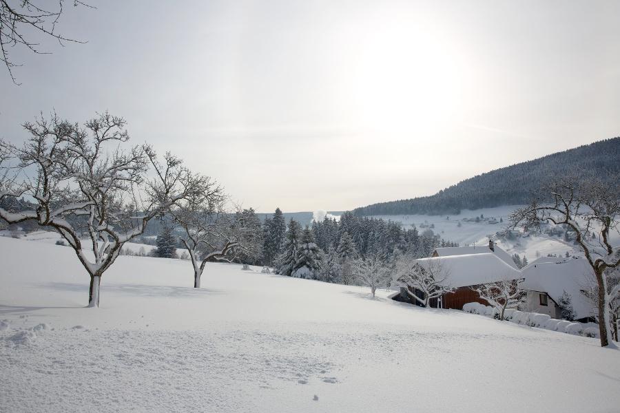 Mitteltal Eulengrund Weißenbach Mitteltal