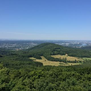 Blick vom Großen Ölberg rheinab Richtung Bonn und Kölner Bucht