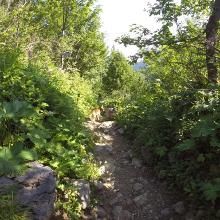 Trail nach baad