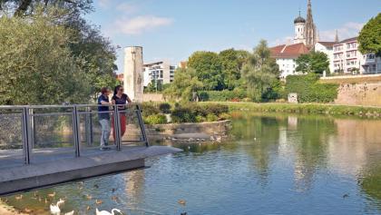 Blick Donau Neu-Ulm
