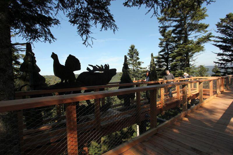 Entdecken Sie die vielfältige Flora und Fauna des Naturparks an den didaktischen Stationen