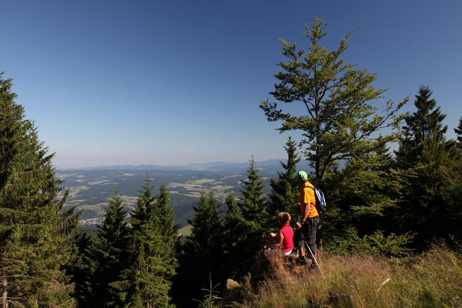 Höhenweg Elzach-Yach