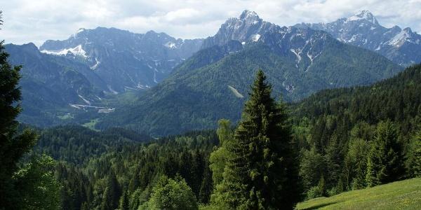 Blick in die Julischen Alpen beim Aufstieg am slowenischen Forstweg