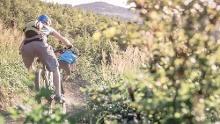 TrailGround® Brilon - Drei Berge