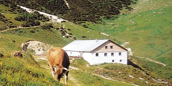 Stuiben-Sennalpe