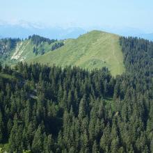 Seekarkreuz vom Spitzkamp-Gipfel