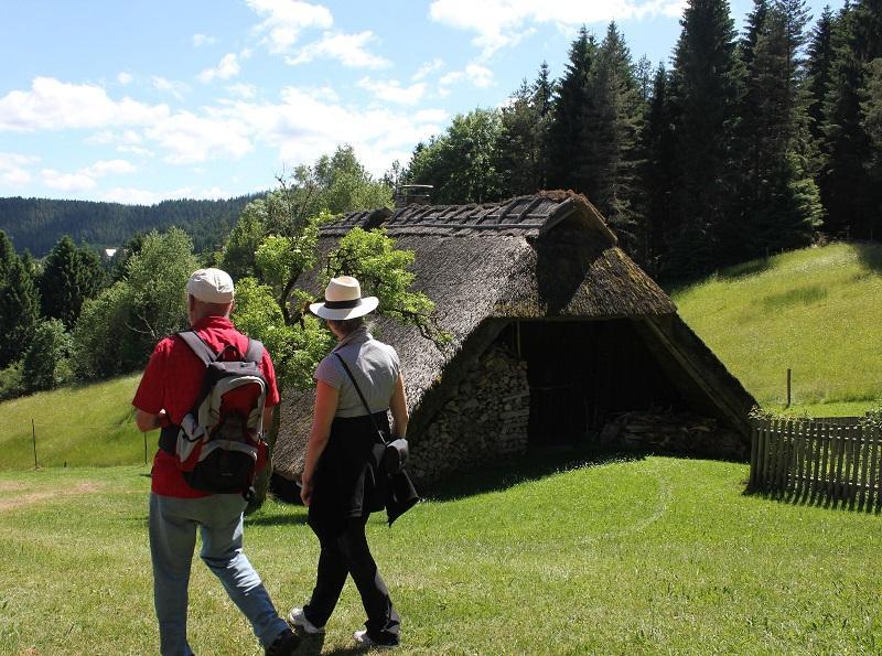 Lauterbacher Hochtalrunde im Wanderparadies Alb - Schwarzwald
