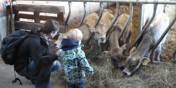 Chrüzhof - die Tiere hautnah für Gross und Klein
