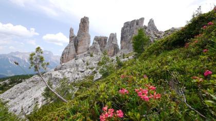 Blick auf die Cinque Torri