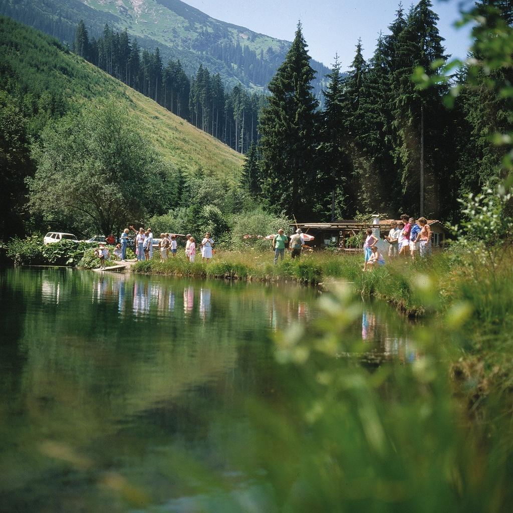 Fischteich - Greither Weiher  - @ Autor: Michael Keller  - © Quelle: Tourismusverband Tannheimer Tal