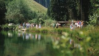 Fischteich - Greither Weiher