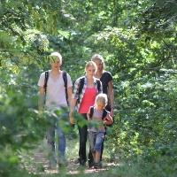 Im Naturschutzgebiet Rixelbruch