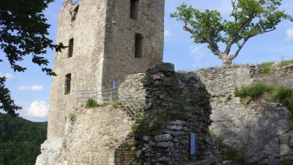 Neideck ~ Burgruine