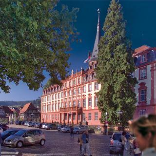 Erbacher Schloß und Marktplatz