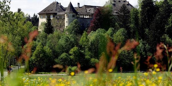 Schloss Hallegg, Foto: J. Puch