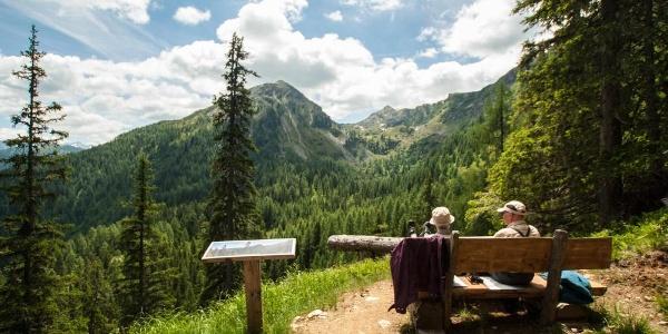 Aussichtspunkt Sommer-Schnee-Rundweg