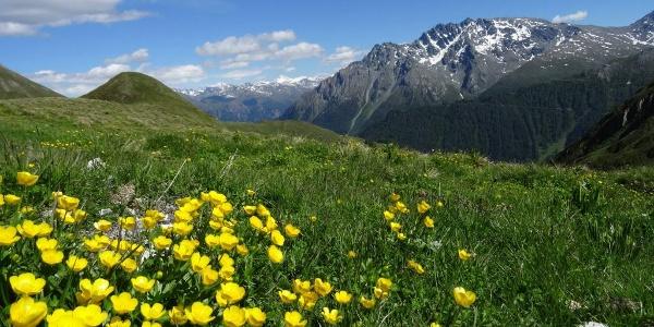 Unterwegs zwischen Samnaun und Alp Bella, Blick auf Piz Mundin
