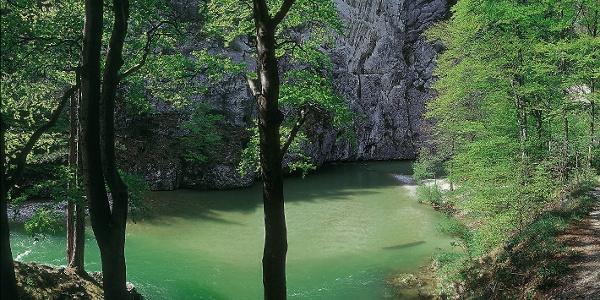 Wasserleitungsweg durchs Höllental