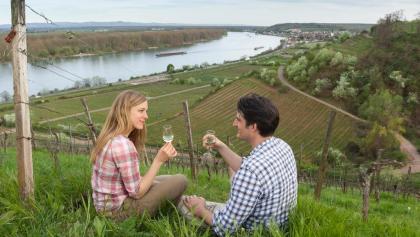 Blick auf Nierstein und den Rhein