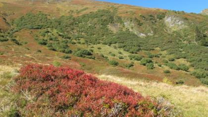 Der Nationalpark Hohe Tauern im Herbst